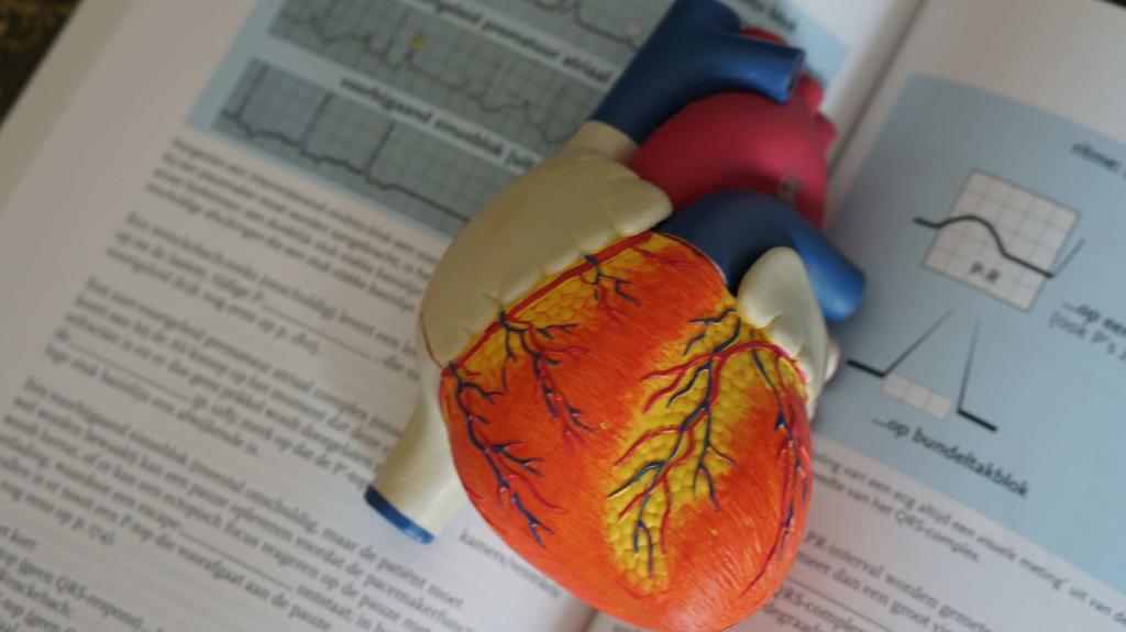 Neue Studie: Risiko auf Herzinfarkt und Schlaganfall während der Erkrankung fast 8-mal höher!