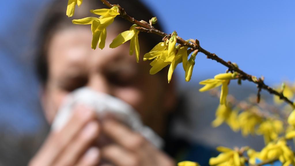 Pollenallergie & Co.: Soll man den Termin zur Covid-19-Impfung verschieben?
