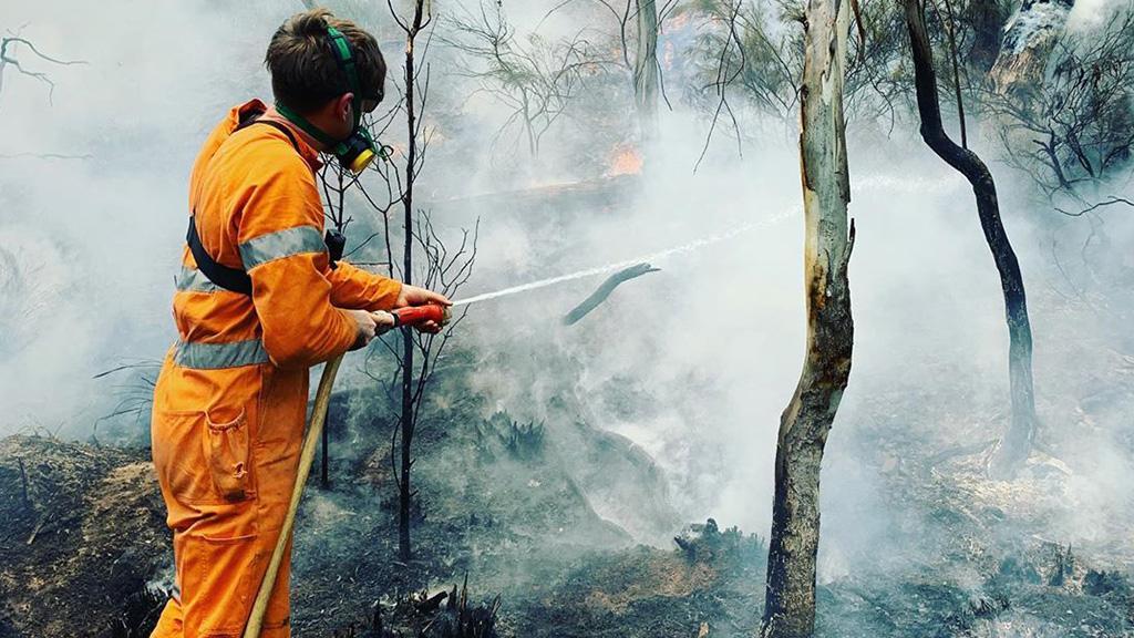 Australien: Filmemacher rettet Häuser vor dem Feuer, dann entdeckt er ein regloses Tier am Boden