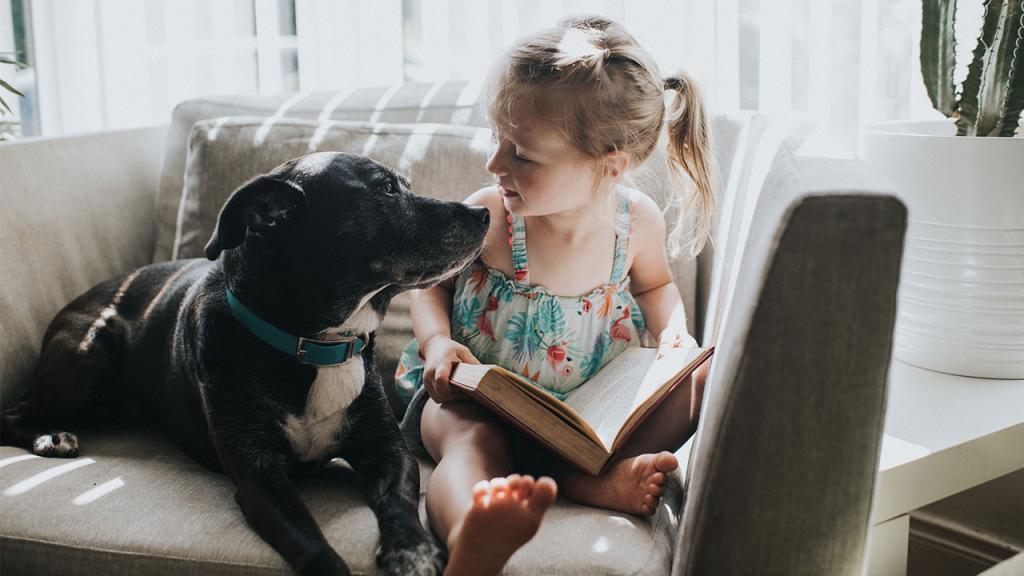 Das sind die kinderfreundlichsten Hunde
