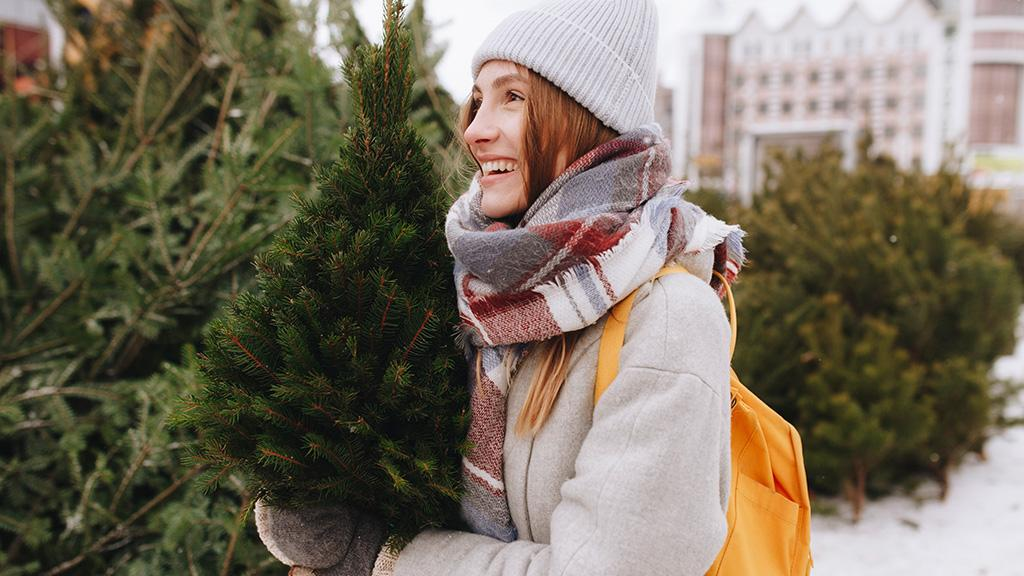O Tannenbaum, o Tannenbaum: Das alles musst du wissen, wenn es um deinen Weihnachtsbaum geht