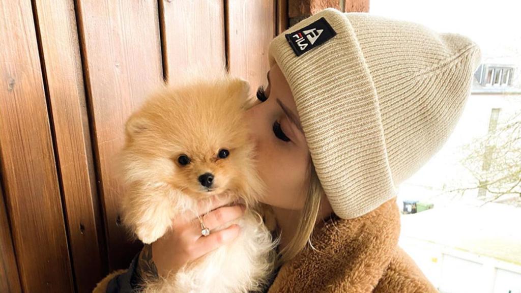 TV-Sternchen adoptiert Hund und gibt ihn drei Tage später wieder ab