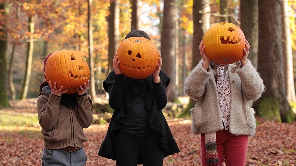Alles, was ihr über Halloween wissen müsst: Herkunft, Kostüme, Dekoideen