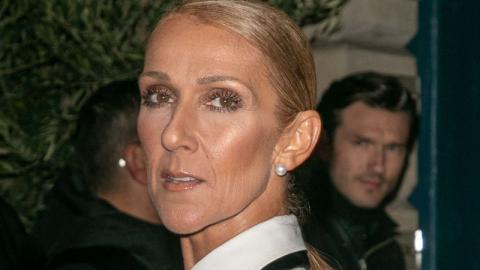Hemmungslos: Céline Dion zeigt sich ohne Make- up
