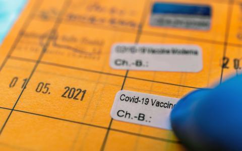 Aus purem Zufall: Hamburger Polizei nimmt Fälscherwerkstatt für Impfpässe hoch