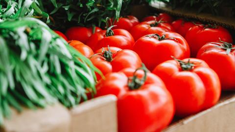 Viele denken, Tomaten gehören in den Kühlschrank: Wenn ihr das seht, werdet ihr es garantiert lassen!