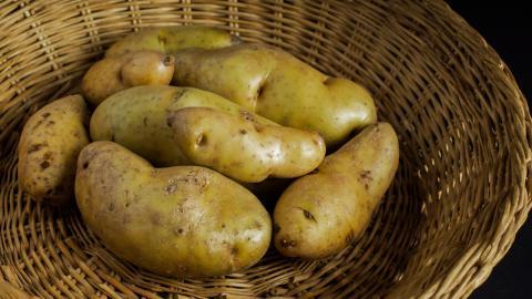 Grüne Kartoffeln: Darf man sie essen oder besser nicht?