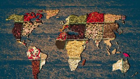 """""""Planetary Health Diet"""": Experten erstellen die ideale Ernährungsweise für Mensch und Umwelt"""