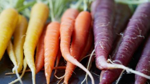 Gesund und lecker: Diese fünf ungeahnten Vorzüge der Karotte