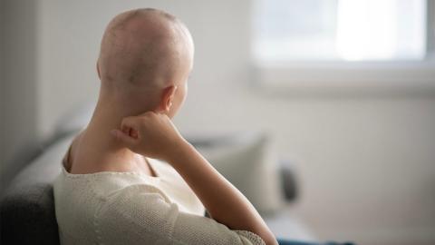 Studie enthüllt, wie sich Krebs verhindern lässt