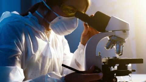Coronavirus-Herkunft: Forscherin bereut ihre neuesten Entdeckungen!