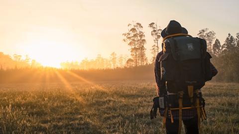 Covid-19: Was ist eigentlich mit all den Backpackern in Australien passiert?