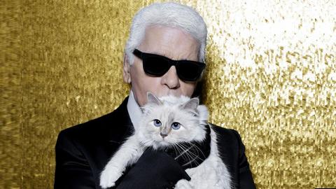 Karl Lagerfeld: Endlich gibt es Lebenszeichen seiner Millionenerbin Choupette