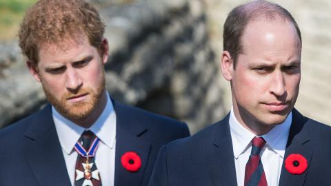 """""""Beleidigend und schädlich"""": Harry und William verurteilen britische Presse"""