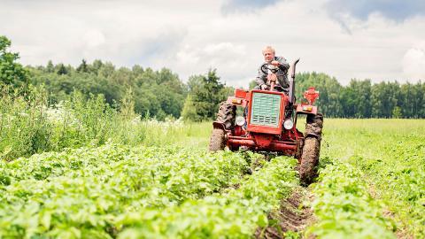 Bauernhof statt Altersheim: Hier kommen Senioren in den Kuhstall!