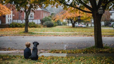 Entlaufenes Kleinkind: Gefährlicher Straßenhund weicht ihm nicht von der Seite