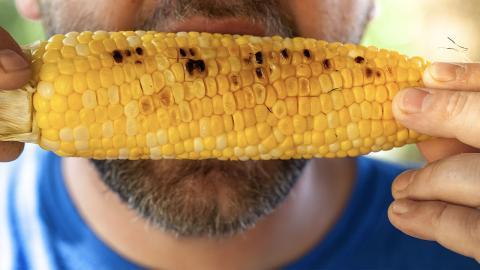 """""""Corn drill challenge"""" endet für junges Mädchen schmerzhaft"""