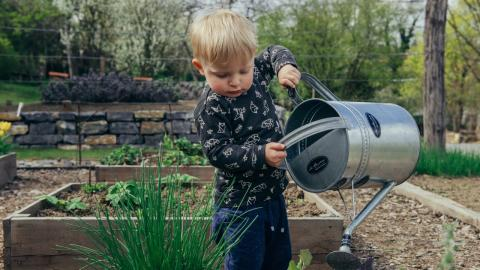 Virales Video: Dieses Kleinkind ist der perfekte Gärtner!