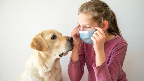 Was passiert, wenn mein Haustier am Coronavirus erkrankt?