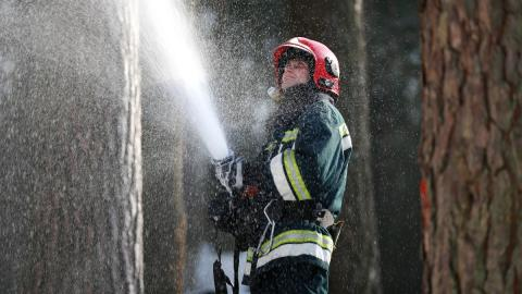 Mutige Aktion: 18-Jähriger rettet hilfloses Wesen aus brennendem Wald