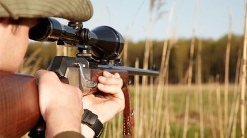 Schusseliger Jäger: Statt ein Reh erlegt er aus Versehen ein ganz anderes Tier