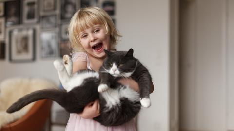 An diesen 5 Zeichen erkennst du, ob deine Katze dich mag