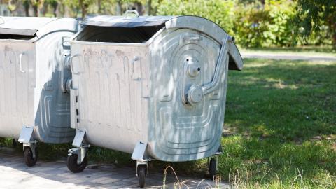 Katzenbaby in Mülltonne am Spielplatz gefunden: Sein Anblick ist erschütternd