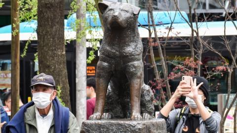 Hund wartet 9 Jahre: Jetzt hat er sein eigenes Denkmal