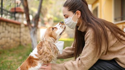 """Braucht mein Hund eine """"Maulkorb-Maske""""?"""