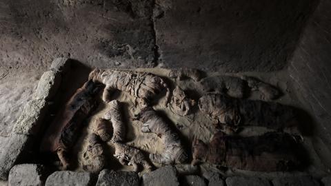 Ägypten: Archäologen finden ältesten Tierfriedhof