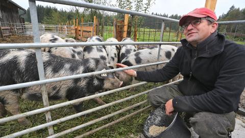 Gruppenschlachtung und Tier-Leasing: So könnte unser Fleischkonsum in Zukunft aussehen!