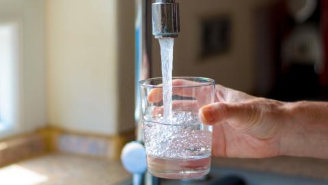 Ohne Wasserfilter am Hahn: Leitungswasser auf natürliche Weise filtern