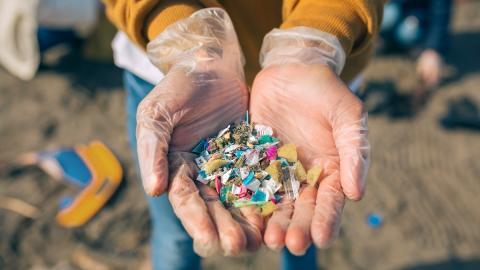 Studie enthüllt: Mikroplastik in beliebter sommerlicher Speise entdeckt