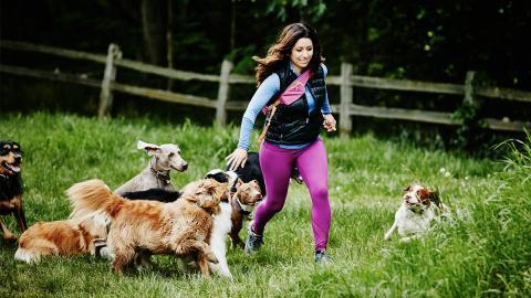 Das sind die fünf anhänglichsten Hunderassen der Welt!