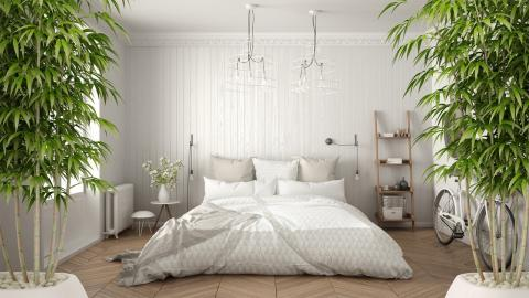 Mit diesen Hauspflanzen vertreibt ihr Schlafstörungen aus eurem Schlafzimmer
