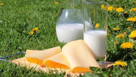 Mindesthaltbarkeitsdatum bei Milchprodukten: So lange bleiben sie genießbar