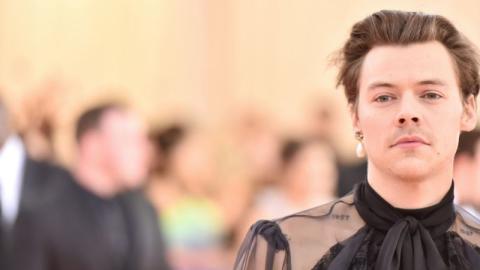 Nach One Direction: Harry Styles spricht über seine liebste Drogenerfahrung