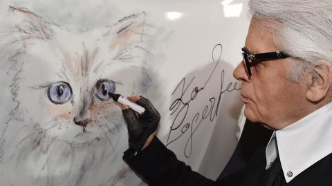 Choupette: So geht es Karl Lagerfelds Katze ein Jahr nach seinem Ableben