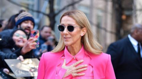Konzertabsage: Céline Dion wird auf das Coronavirus getestet