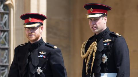 William und Harry: Bringt Statue von Lady Di die Brüder wieder zusammen?