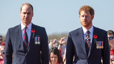 Royale Beerdigung: Das haben Prinz William und Harry wirklich besprochen