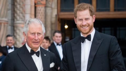 Aus allen Wolken gefallen: Prinz Charles von Harrys überstürzter Abreise entsetzt