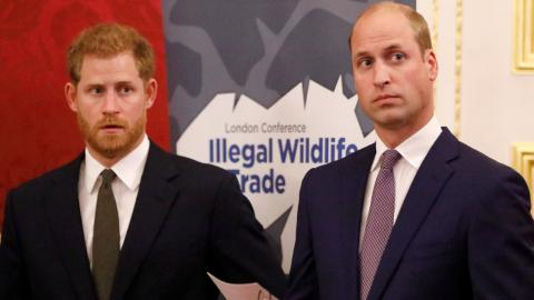 """""""Kampf der Brüder"""": Historiker scheint den wahren Grund von William und Harrys Streit zu kennen"""