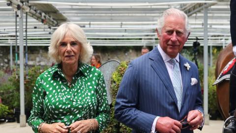 Vermeintlicher Sohn von Camilla und Charles veröffentlicht neuen Beweis