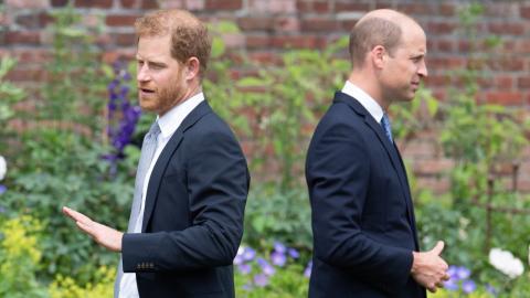 William und Harry: Ihr Verhalten bei Enthüllung von Diana-Statue spricht Bände