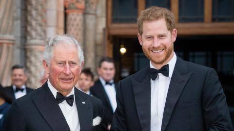 Prinz Charles: Versöhnungs-Dinner mit Sohn Harry