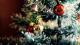Tochter erschreckt: Zwei Augen starren sie durch Weihnachtsbaum an
