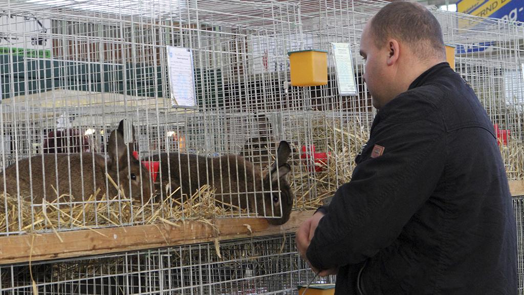 Zuchtbedingungen bei Kaninchen: Wenn du das siehst, vergeht dir der Appetit