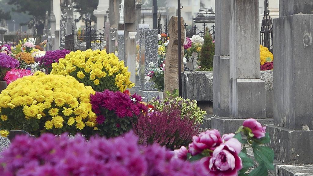 Ihr kleiner Sohn stirbt: An seinem Grab kommt eine Botschaft aus dem Jenseits