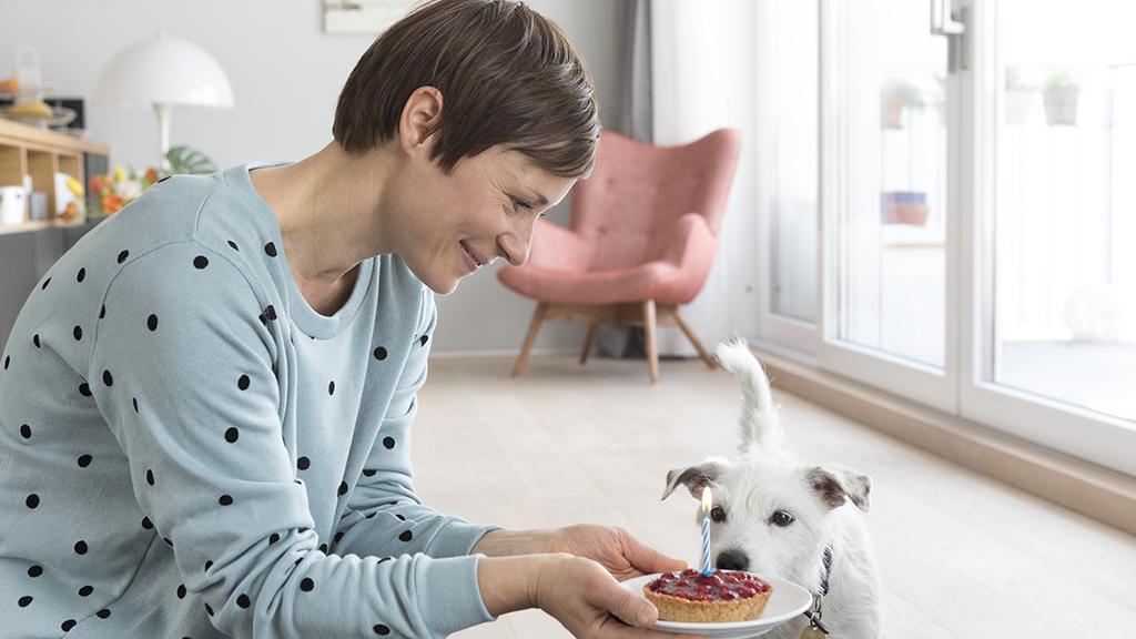 Das solltest du wissen: Diese Lebensmittel sind für dein Haustier tödlich (und es ist nicht nur Schokolade)
